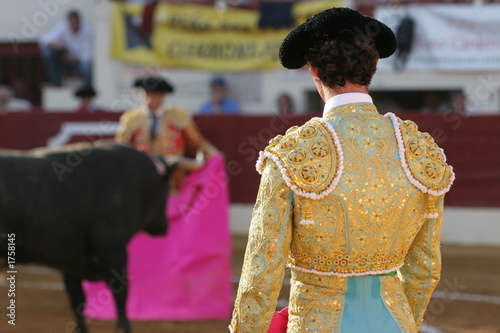 Wall Murals Bullfighting corrida