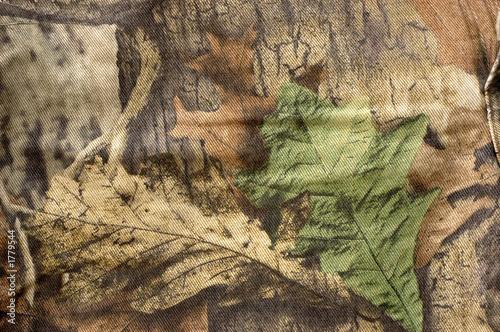 Fotografía  camouflage