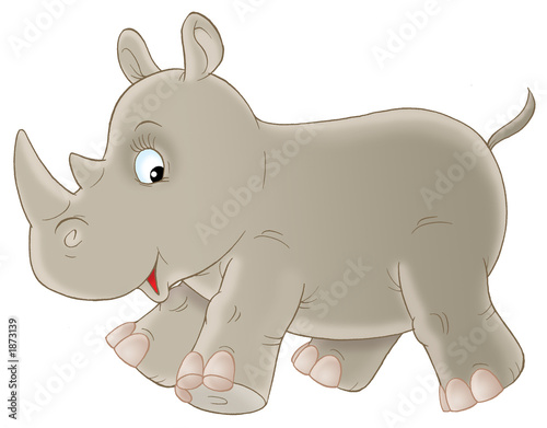Poster Zoo grey rhinoceros