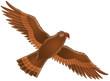 canvas print picture eagle