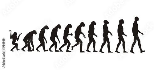 Fotografie, Tablou human evolution