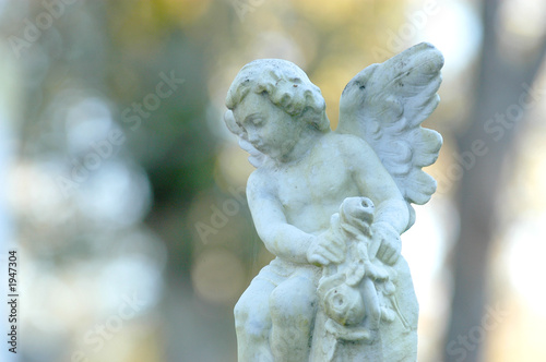 Fotografie, Obraz  baby angel.