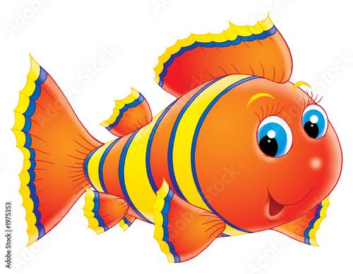 coral fish #1975353