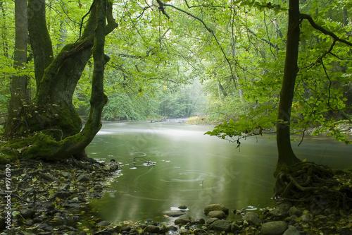 Foto auf Gartenposter Fluss calm river