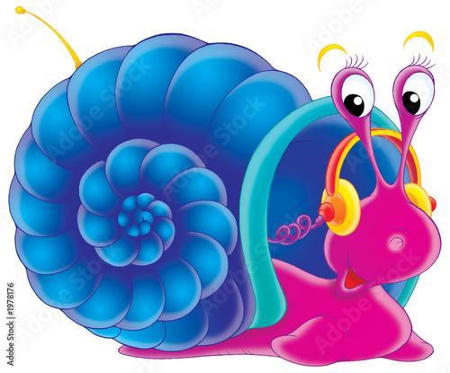 Foto-Plissee - musical snail (von Alexey Bannykh)