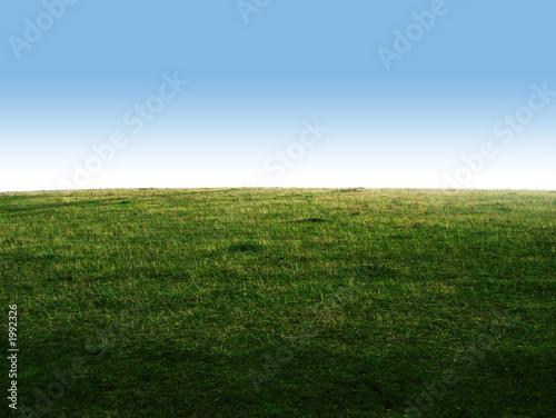 Montage in der Fensternische Gras grass hill
