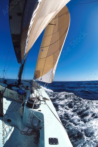 Poster Zeilen sailing 5