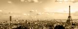 Fototapeta Fototapety z wieżą Eiffla - les toits de paris