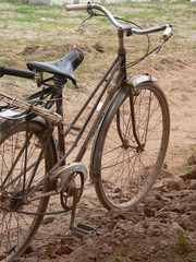 Fototapeta old bicycle