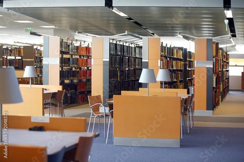 Fotografie, Obraz  library