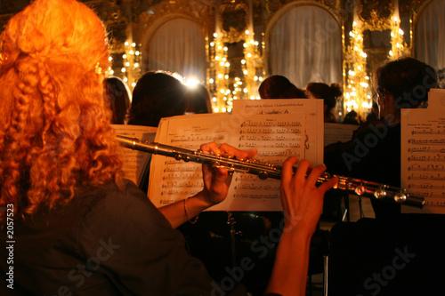 Fotografie, Obraz  the flutist in an orchestra