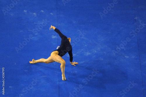 Poster de jardin Gymnastique gymanastic floor 03