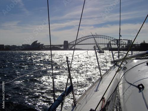 sailing sydney harbour Obraz na płótnie