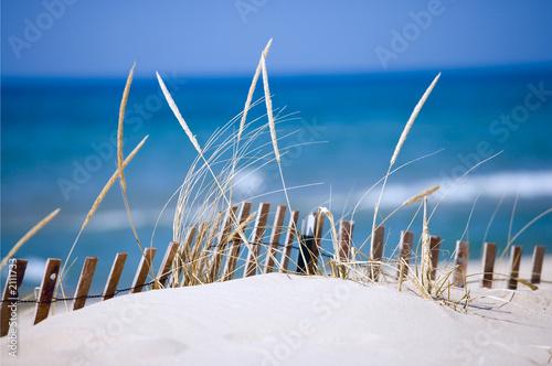 Foto-Kissen - lake sand dunes (von Tony Mandarich)
