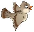 canvas print picture sparrow