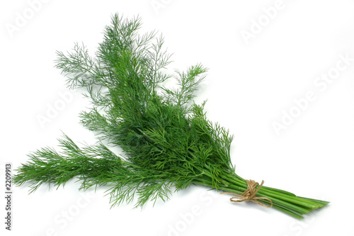 Canvas dill
