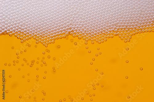 Valokuvatapetti bière et mousse