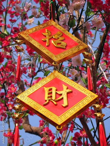 happy chinese new year! Canvas-taulu
