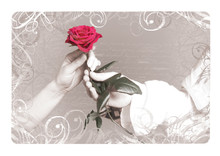 Vintage Background With A Rose