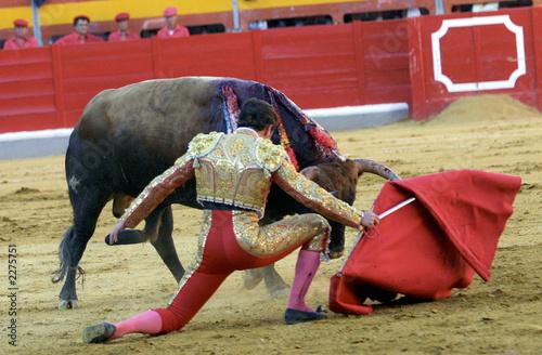 Deurstickers Stierenvechten cd_tor13