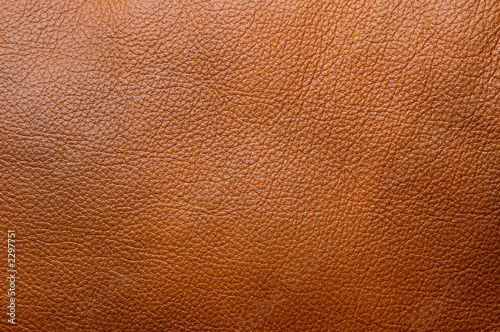 Fotografie, Obraz  leather background