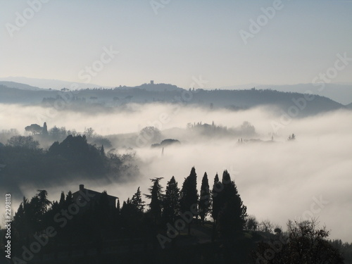 Poster Morning with fog nebbia