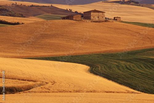 Fotografija  campagna toscana