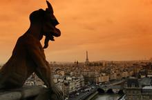 Paris Gargouille