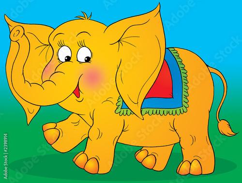 Foto-Plissee - circus elephant (von Alexey Bannykh)