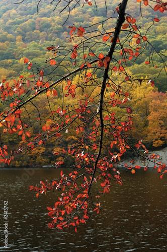 Valokuvatapetti fall colors at bear mountain
