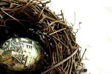 Your Nest Egg