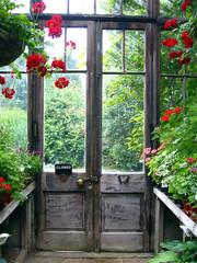 Fototapetaclosed door in a secret garden