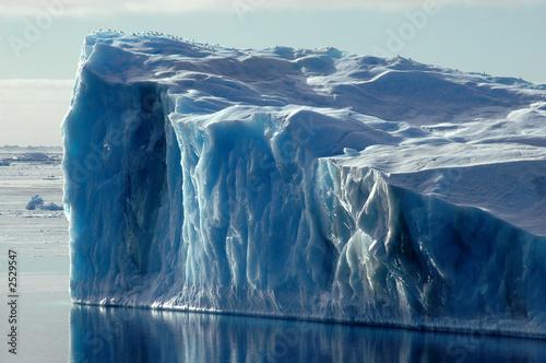 Ingelijste posters Antarctica blue antarctic iceberg