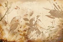 Herbst Blätter Collage Hintergrund