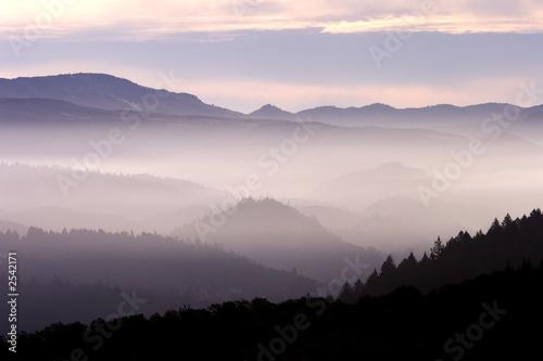 Fotografie, Obraz  fog landscape