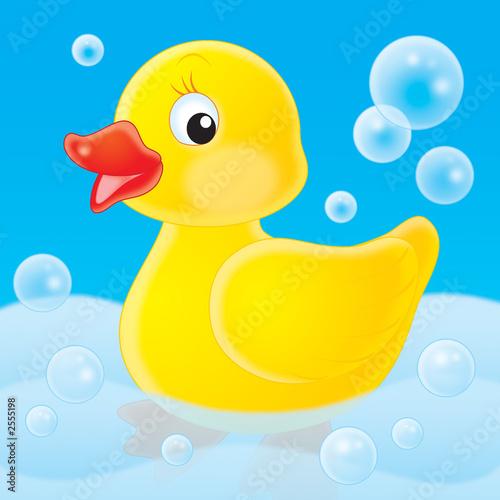 Foto-Stoff - duckling (von Alexey Bannykh)