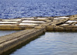 erosion puddles