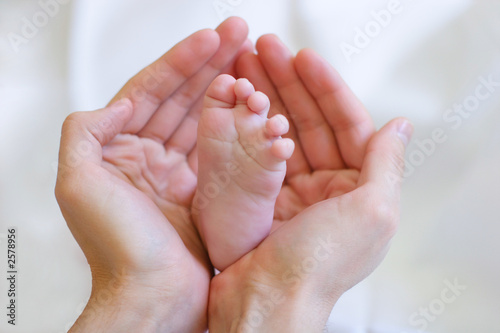 father gently hold baby's leg in your hands #1 Canvas-taulu