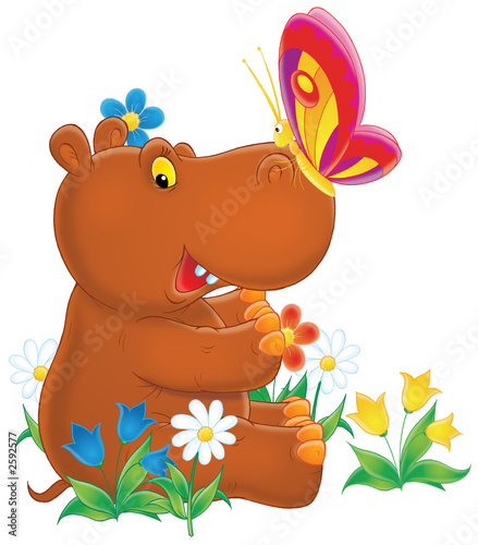 Poster de jardin Zoo hippopotamus and butterfly