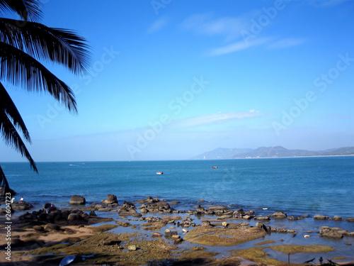 Garden Poster South America Country puerto plata - caribbean - island