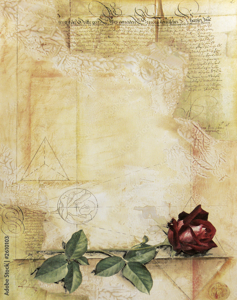 Foto-Stoff bedruckt - old ancient parchment with red rose