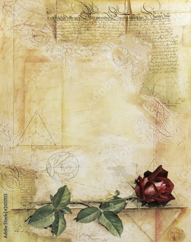 Foto-Rollo - old ancient parchment with red rose (von Pavel Drozda)