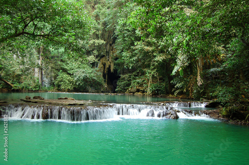 jungle lagoon, green water, thailand #2621382