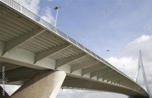 Foto auf Acrylglas Schwan suspension bridge 14