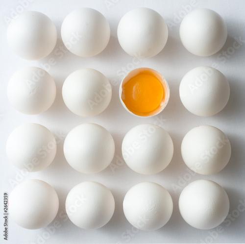 Fototapeta odd egg out obraz