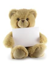 Teddy Bear With Blank Sheet