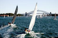 Yacht Regatta At Sydney Harbor