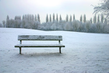 Bench In The Snow In Park