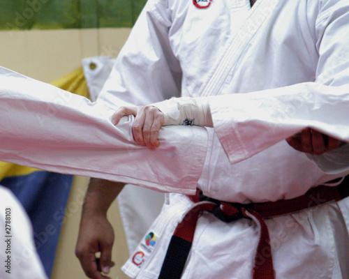 Photo Stands Martial arts wrist lock