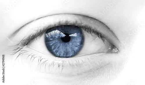 Poster Iris oeil de femme bleu symbole de douceur